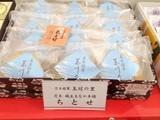 IMG_3622茨木ちとせ玉川の城.JPG